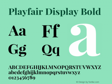 Playfair Display Bold Version 1.003;PS 001.003;hotconv 1.0.70;makeotf.lib2.5.58329; ttfautohint (v0.93) -l 42 -r 42 -G 200 -x 14 -w