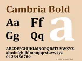 Cambria Bold Version 5.97图片样张