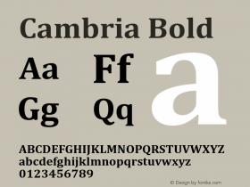 Cambria Bold Version 6.98图片样张