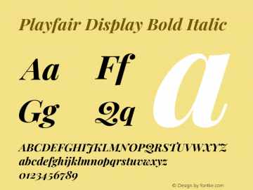 Playfair Display Bold Italic Version 1.200;PS 001.200;hotconv 1.0.88;makeotf.lib2.5.64775图片样张