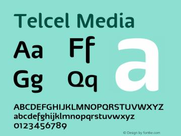 Telcel Media Version 1.00 2010图片样张