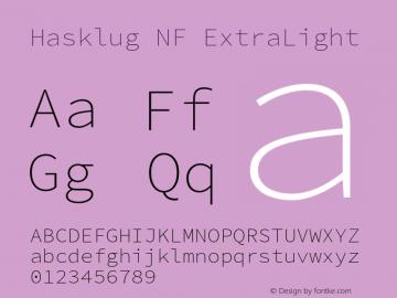 Hasklug ExtraLight Nerd Font Complete Windows Compatible Version 2.030;PS 1.0;hotconv 16.6.51;makeotf.lib2.5.65220 Font Sample