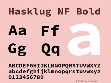 Hasklug Bold Nerd Font Complete Mono Windows Compatible Version 2.030;PS 1.0;hotconv 16.6.51;makeotf.lib2.5.65220 Font Sample