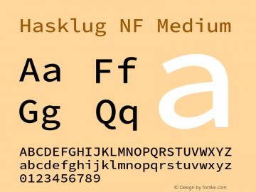 Hasklug Medium Nerd Font Complete Mono Windows Compatible Version 2.030;PS 1.0;hotconv 16.6.51;makeotf.lib2.5.65220 Font Sample