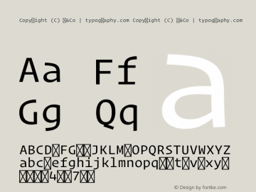 Copyright (C) H&Co | typography.com Version 1.300图片样张