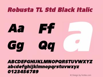 RobustaTLStd-BlackIt Version 1.20; 2011图片样张