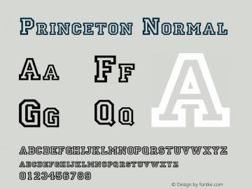 Princeton Normal Altsys Fontographer 4.1 11/15/95图片样张