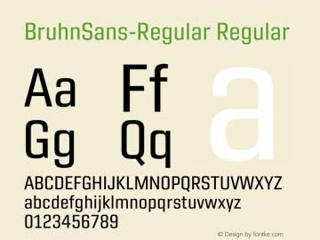 Bruhn Sans Regular Version 1.00图片样张