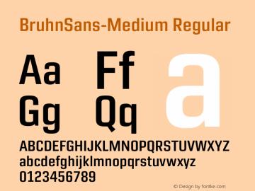 Bruhn Sans Medium Version 1.00图片样张
