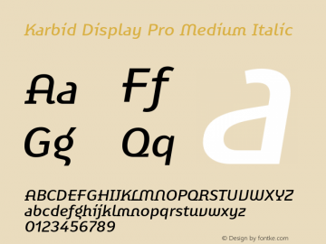 KarbidDisplayPro-MediumItalic Version 7.504; 2011; Build 1021图片样张