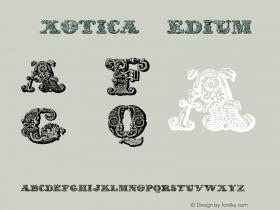 Exotica Medium 2001; 1.0, initial release图片样张