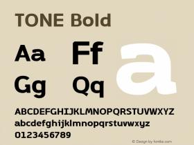TONE Bold Template Version 1.001图片样张
