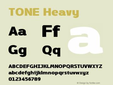 TONE Heavy Version 1.001图片样张
