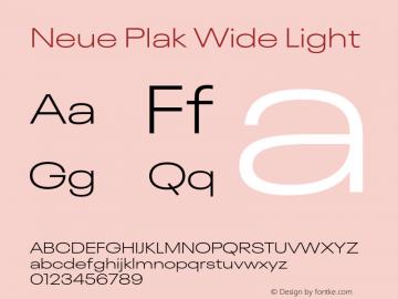Neue Plak Wide Light Version 1.00, build 9, s3图片样张