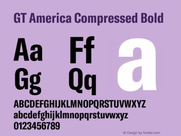 GTAmerica-CompressedBold Version 1.003;PS 001.003;hotconv 1.0.88;makeotf.lib2.5.64775图片样张