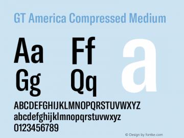 GTAmerica-CompressedMedium Version 1.003;PS 001.003;hotconv 1.0.88;makeotf.lib2.5.64775图片样张