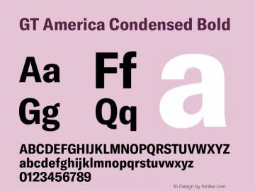 GTAmerica-CondensedBold Version 1.003;PS 001.003;hotconv 1.0.88;makeotf.lib2.5.64775图片样张