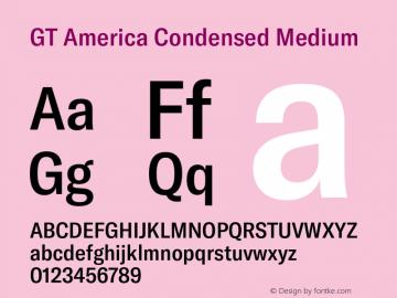 GTAmerica-CondensedMedium Version 1.003;PS 001.003;hotconv 1.0.88;makeotf.lib2.5.64775图片样张