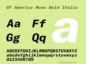 GTAmericaMono-BoldItalic Version 1.003;PS 001.003;hotconv 1.0.88;makeotf.lib2.5.64775图片样张