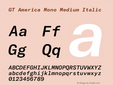 GTAmericaMono-MediumItalic Version 1.003;PS 001.003;hotconv 1.0.88;makeotf.lib2.5.64775图片样张