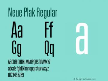 Neue Plak Comp Regular Version 1.00图片样张
