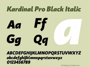KardinalPro-BlackItalic Version 1.0 | wf-rip DC20180130图片样张