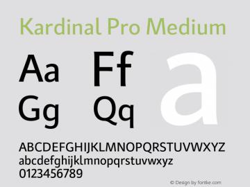 KardinalPro-Medium Version 1.0 | wf-rip DC20180130图片样张