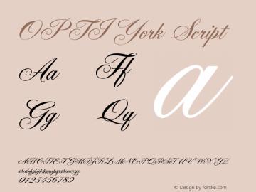 OPTIYork-Script Version 001.000图片样张