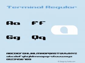 Terminal-Regular Version 001.000图片样张