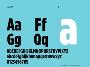 Copyright (C) H&Co | typography.com Version 2.301图片样张