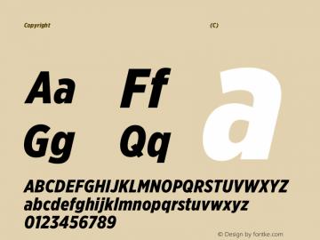Copyright (C) H&Co | typography.com Version 2.302图片样张