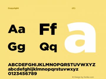 Copyright (C) H&Co | typography.com Version 3.301图片样张