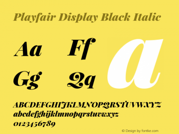 Playfair Display Black Italic Version 1.005; ttfautohint (v1.2) -l 10 -r 42 -G 200 -x 21 -D latn -f latn -w G -X