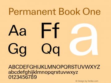 Permanent-BookOne Version 1.000图片样张