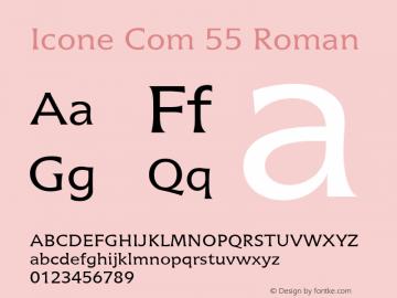 Icone Com 55 Roman Version 1.01图片样张
