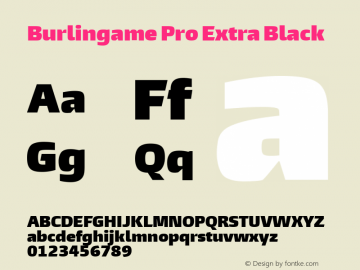 Burlingame Pro X Black Version 1.00图片样张