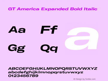 GT America Expanded Bold Italic Version 4.001;PS 004.001;hotconv 1.0.88;makeotf.lib2.5.64775图片样张
