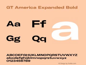GT America Expanded Bold Version 5.001;PS 005.001;hotconv 1.0.88;makeotf.lib2.5.64775图片样张