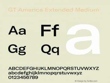 GT America Extended Medium Version 5.001;PS 005.001;hotconv 1.0.88;makeotf.lib2.5.64775图片样张