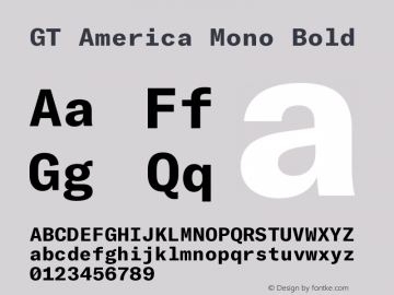 GT America Mono Bold Version 2.001;PS 002.001;hotconv 1.0.88;makeotf.lib2.5.64775图片样张