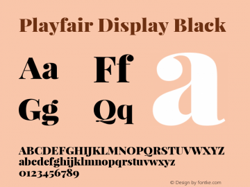 Playfair Display Black Regular Version 1.002;PS 001.002;hotconv 1.0.70;makeotf.lib2.5.58329; ttfautohint (v0.93) -l 42 -r 42 -G 200 -x 14 -w