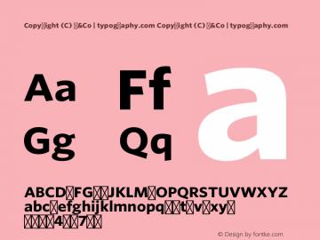 Copyright (C) H&Co | typography.com Version 1.301 Pro (Latin-X, Greek, Cyrillic-X)图片样张