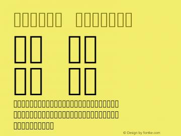 Symbol Version 5.01图片样张
