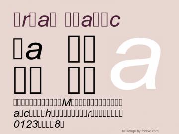 Arial Italic Version 6.98图片样张