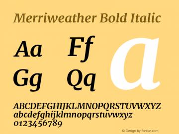 Merriweather Bold Italic Version 2.002;PS 002.002;hotconv 1.0.88;makeotf.lib2.5.64775图片样张