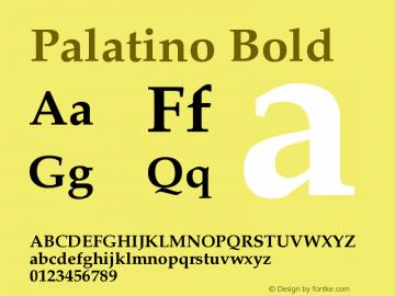 Palatino-Bold Version 001.000图片样张