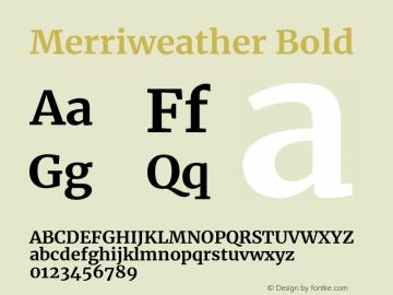 Merriweather Bold Version 2.002;PS 002.002;hotconv 1.0.88;makeotf.lib2.5.64775图片样张