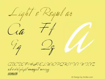 Lighte Regular Altsys Metamorphosis:11/13/94图片样张