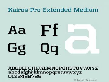 Kairos Pro Extended Medium Version 1.00图片样张