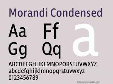 Morandi Cond Version 1.20, build 14, gb1060, s3图片样张